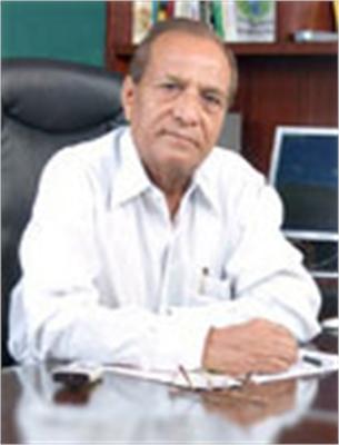 B.  L. Gaur