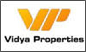 Vidya Properties