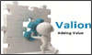 Valion Realty Private Limited