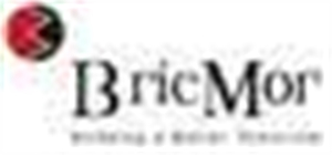 Bricmor developers