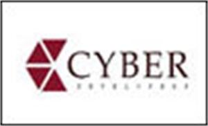 Cyber Developer