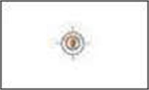 SreeReddy Properties Pvt. Ltd.