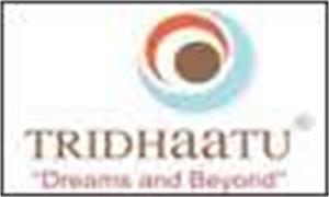 Tridhaatu Ventures Pvt Ltd