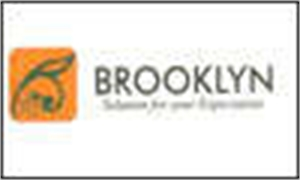 Brooklyn Infrastructure & Properties Pvt Ltd