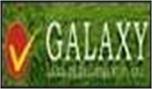 Galaxy Land Development P Ltd