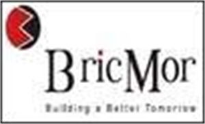Bricmor developers