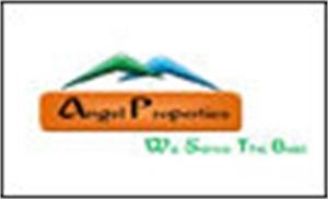 Angel Properties