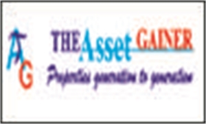 The Asset Gainer