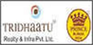 Tridhaatu