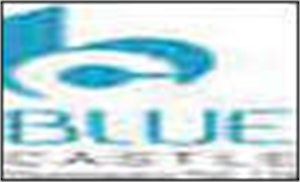 Blue Castle Developer Pvt. Ltd.