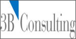 3b Consulting Pvt. Ltd.
