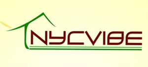 Nycvibe Infrastructure & Consultancy pvt.ltd