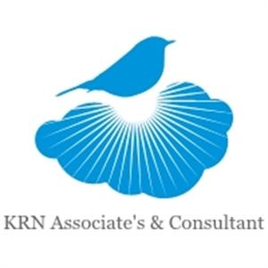 Krn Associate's & Consultant