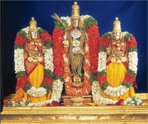 Sri Srinivasa Real Estate Consultency