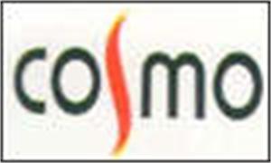 Cosmo Consultancy Services
