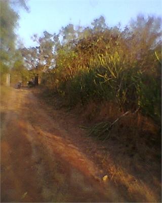 Residential Plot / Land For Sale in kudal vengurla highway, Kudal