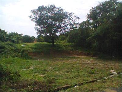 Residential Plot / Land For Sale in Cavelossim, South Goa, Goa