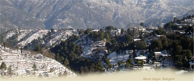Agricultural Land / Farm Land For Sale in Ramgarh, Nainital