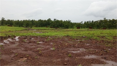 Residential Plot / Land For Sale in Murbad, Thane