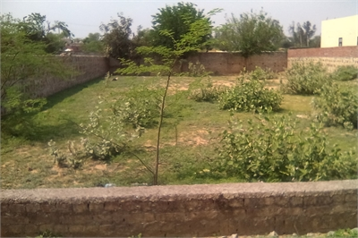 Farm House For Sale in Bhati Mines, New Delhi