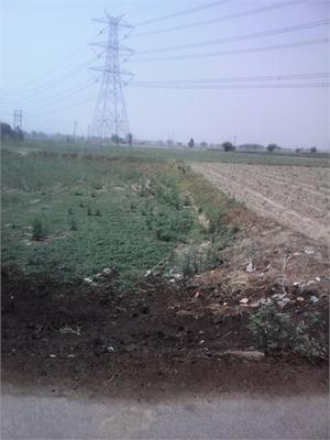 Agricultural Land / Farm Land For Sale in Najafgarh, New Delhi