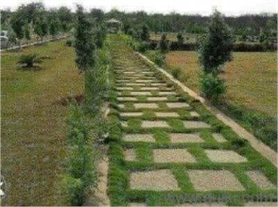 Residential Plot / Land For Sale in Kothur, Hyderabad