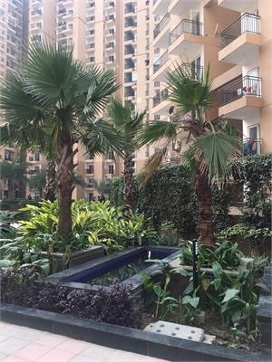4 BHK, Multistorey Apartment / Flat For Sale in Noida Extension, Noida