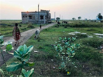Residential Plot / Land For Sale in Talit, Hoogly