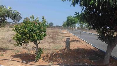 Residential Plot / Land For Sale in Shad Nagar, Hyderabad
